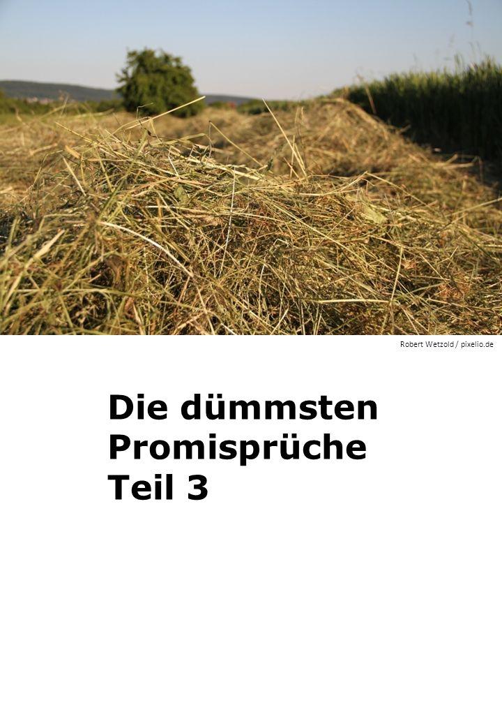 Die dümmsten Promisprüche Teil 3 Robert Wetzold / pixelio.de