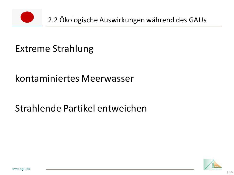 10 I www.pgu.de 2.2 Ökologische Auswirkungen während des GAUs Extreme Strahlung kontaminiertes Meerwasser Strahlende Partikel entweichen