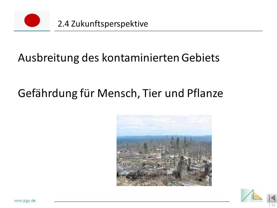 12 I www.pgu.de 2.4 Zukunftsperspektive Ausbreitung des kontaminierten Gebiets Gefährdung für Mensch, Tier und Pflanze