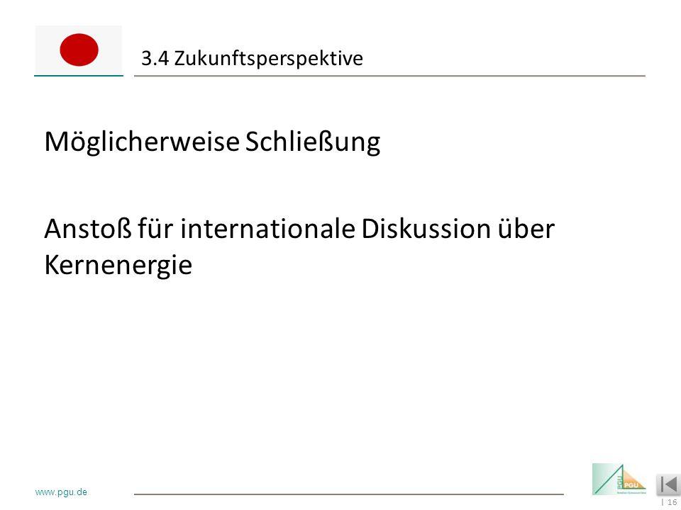 16 I www.pgu.de 3.4 Zukunftsperspektive Möglicherweise Schließung Anstoß für internationale Diskussion über Kernenergie