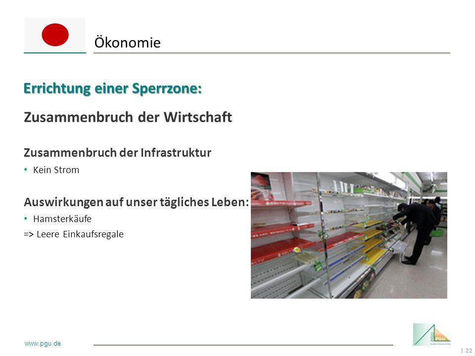 22 I www.pgu.de Zusammenbruch der Wirtschaft Zusammenbruch der Infrastruktur Kein Strom Auswirkungen auf unser tägliches Leben: Hamsterkäufe => Leere
