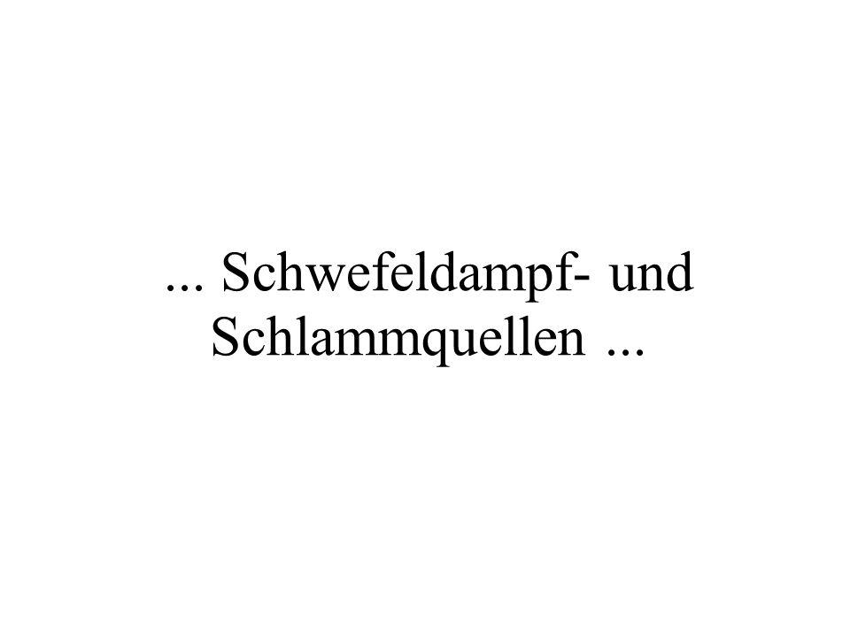 ... Schwefeldampf- und Schlammquellen...
