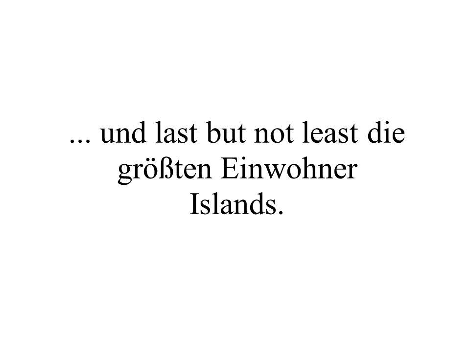 ... und last but not least die größten Einwohner Islands.