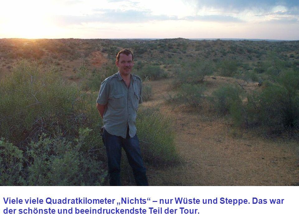 Viele viele Quadratkilometer Nichts – nur Wüste und Steppe.