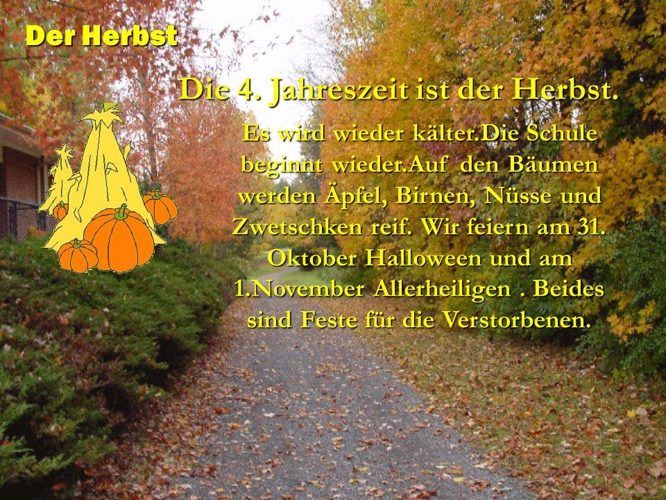 Es wird wieder kälter.Die Schule beginnt wieder.Auf den Bäumen werden Äpfel, Birnen, Nüsse und Zwetschken reif. Wir feiern am 31. Oktober Halloween un
