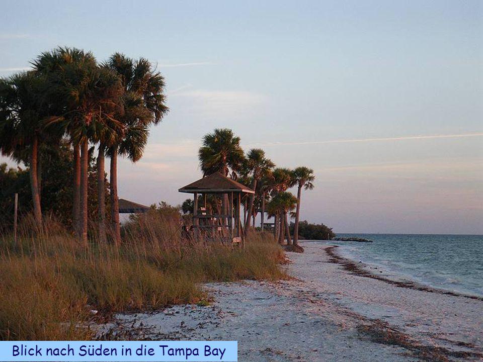 Blick nach Süden in die Tampa Bay