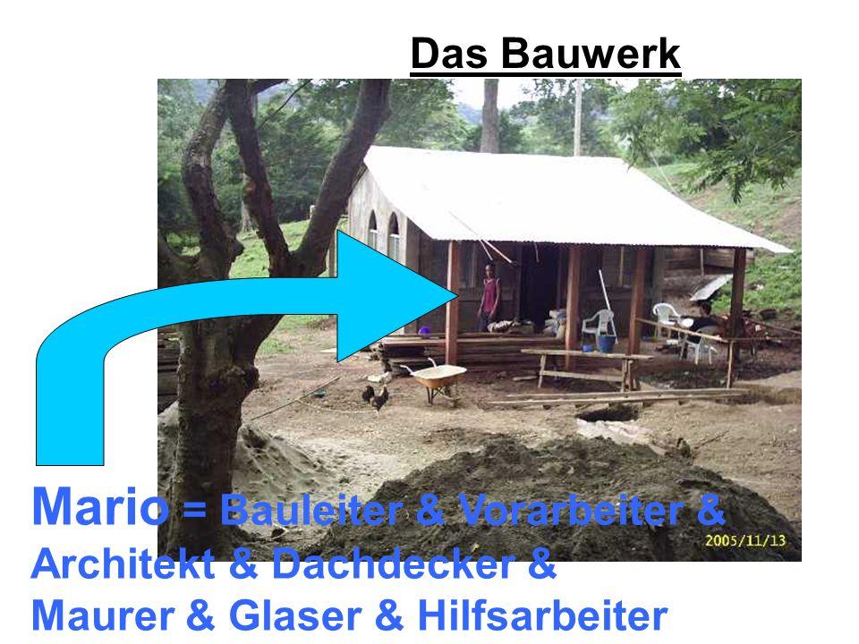 Das Bauwerk Mario = Bauleiter & Vorarbeiter & Architekt & Dachdecker & Maurer & Glaser & Hilfsarbeiter