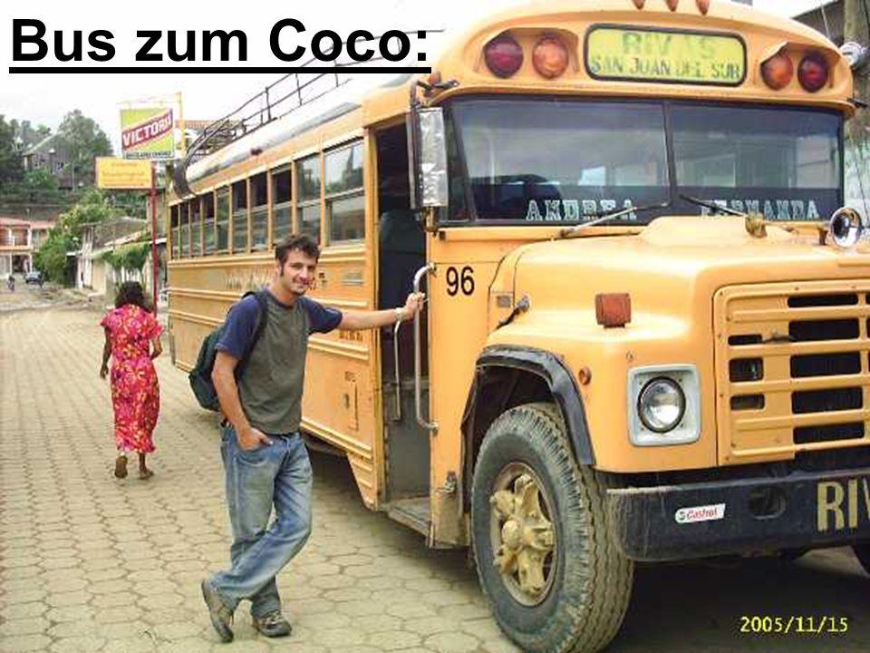 Bus zum Coco: