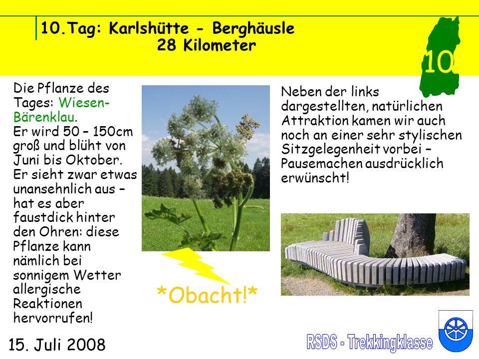 10.Tag: Karlshütte - Berghäusle 28 Kilometer 15. Juli 2008 10 Die Pflanze des Tages: Wiesen- Bärenklau. Er wird 50 – 150cm groß und blüht von Juni bis