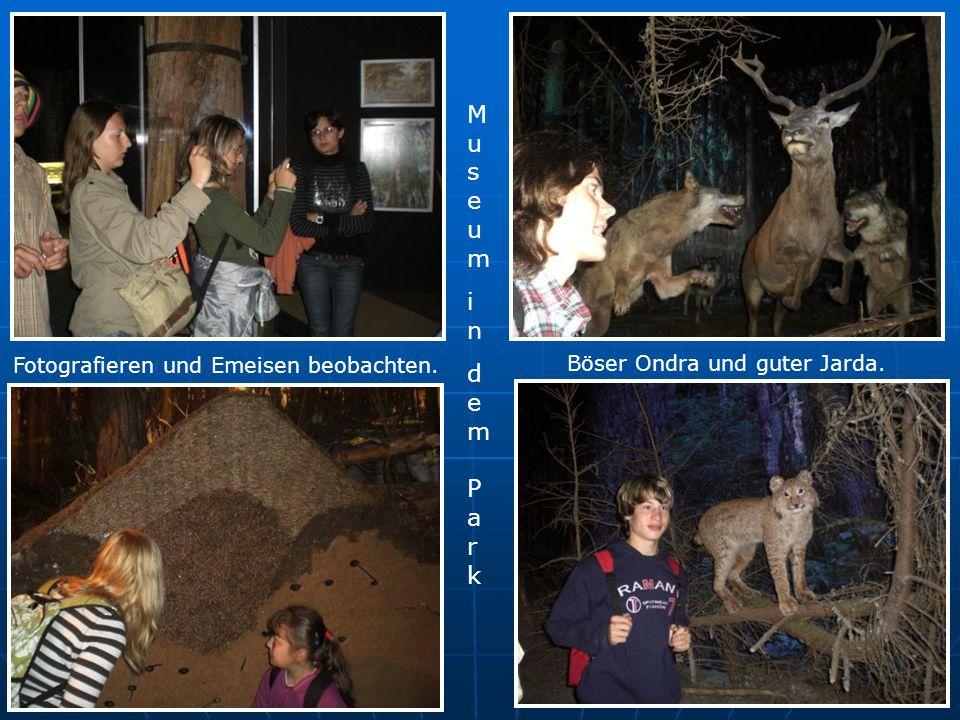 Museumindem ParkMuseumindem Park Fotografieren und Emeisen beobachten. Böser Ondra und guter Jarda.