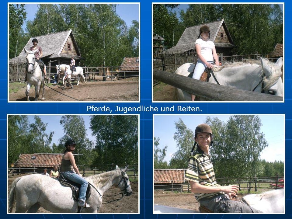 Pferde, Jugendliche und Reiten.