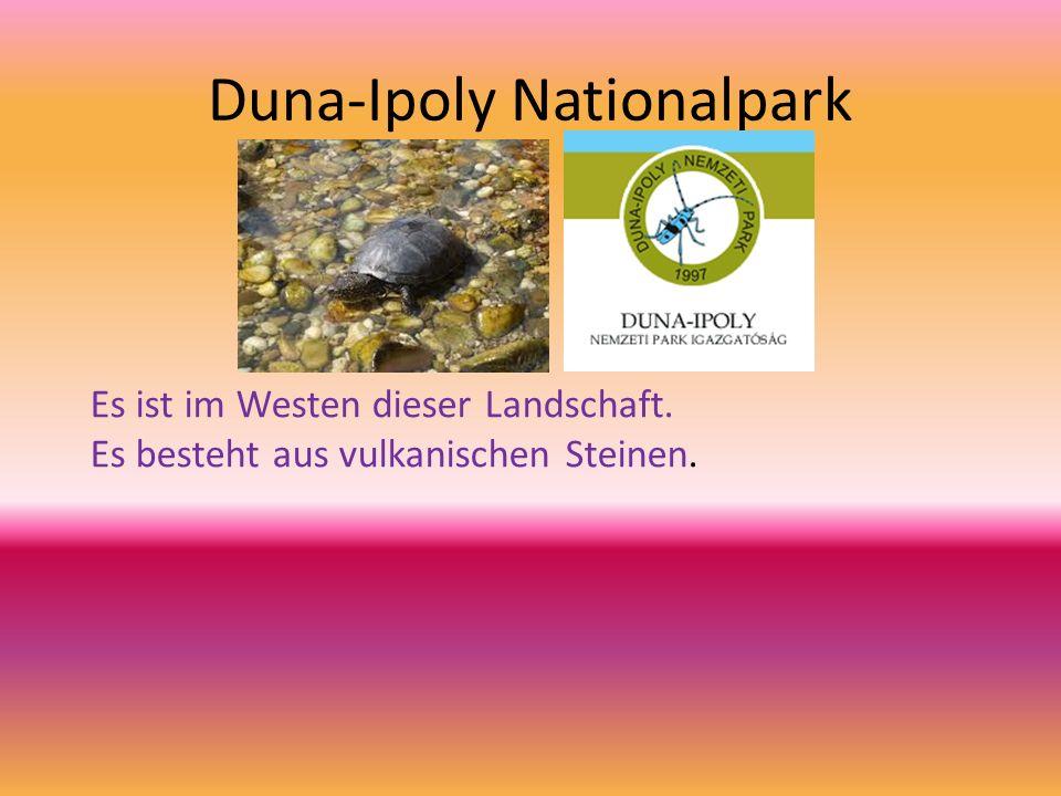 Duna-Ipoly Nationalpark Es ist im Westen dieser Landschaft. Es besteht aus vulkanischen Steinen.