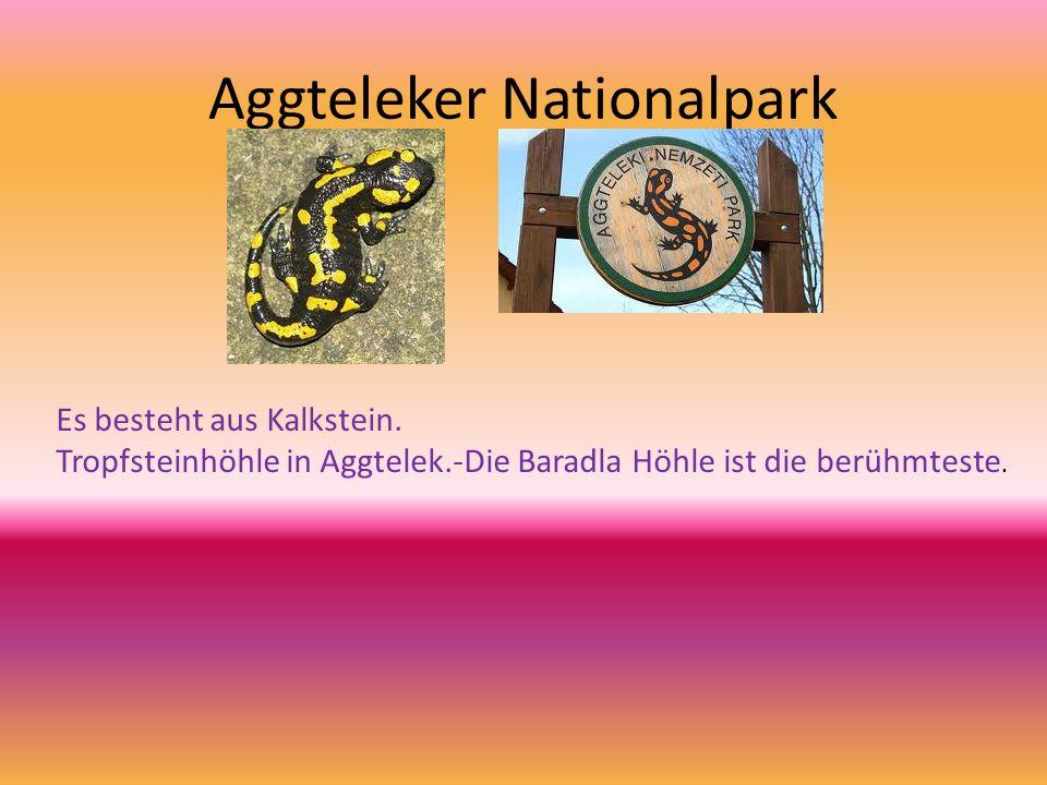 Aggteleker Nationalpark Es besteht aus Kalkstein. Tropfsteinhöhle in Aggtelek.-Die Baradla Höhle ist die berühmteste.