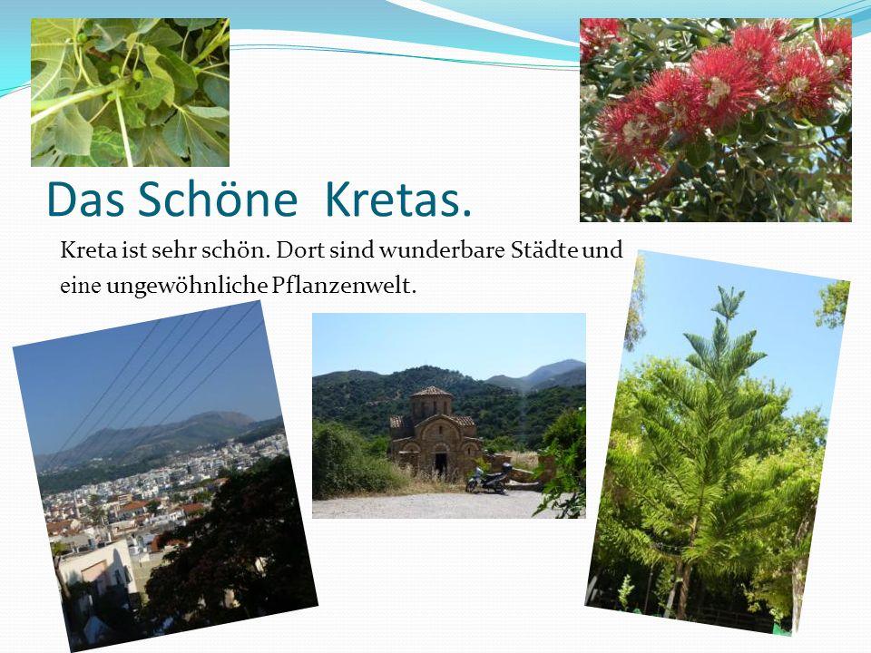 Das Schöne Kretas. Kreta ist sehr schön. Dort sind wunderbar e Städte und eine ungewöhnliche Pflanzenwelt.