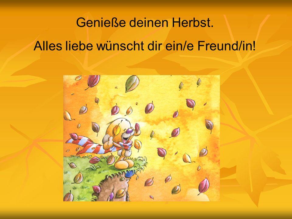 Genieße deinen Herbst. Alles liebe wünscht dir ein/e Freund/in!