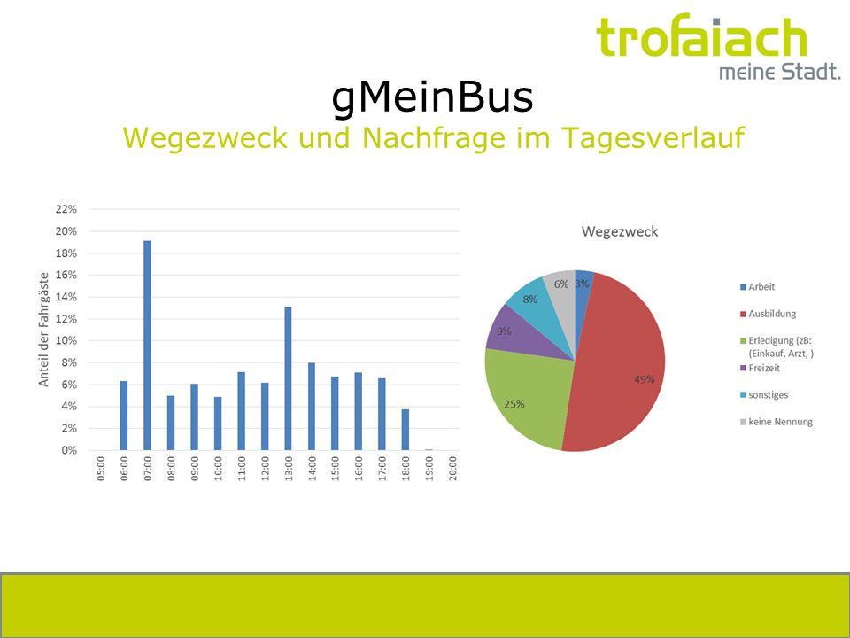gMeinBus Wegezweck und Nachfrage im Tagesverlauf