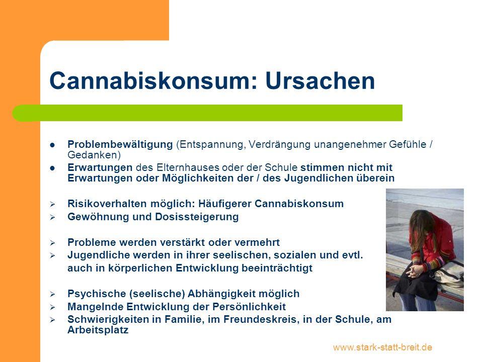 www.stark-statt-breit.de Cannabiskonsum: Ursachen Problembewältigung (Entspannung, Verdrängung unangenehmer Gefühle / Gedanken) Erwartungen des Eltern