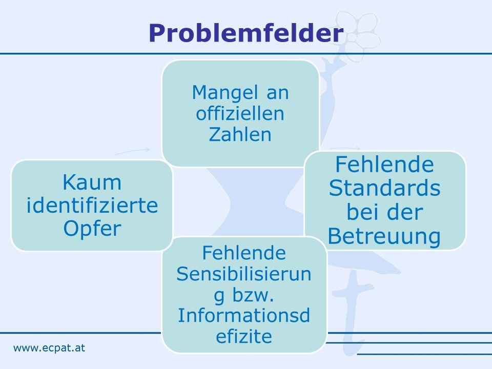 Problemfelder Mangel an offiziellen Zahlen Fehlende Standards bei der Betreuung Fehlende Sensibilisierun g bzw. Informationsd efizite Kaum identifizie