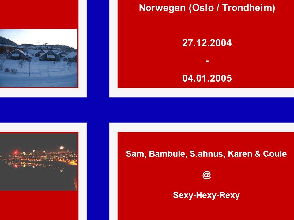 Norwegen (Oslo / Trondheim) 27.12.2004 - 04.01.2005 Sam, Bambule, S.ahnus, Karen & Coule @ Sexy-Hexy-Rexy