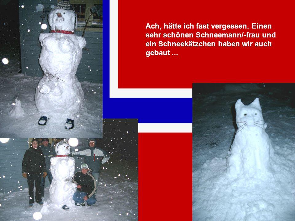 Ach, hätte ich fast vergessen. Einen sehr schönen Schneemann/-frau und ein Schneekätzchen haben wir auch gebaut...