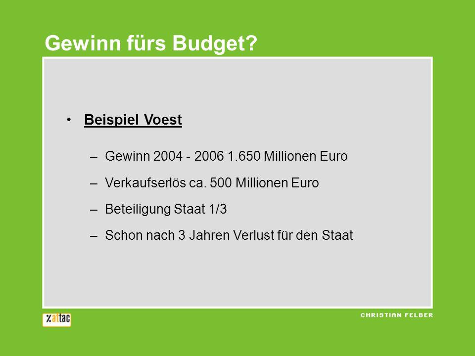 Beispiel Voest –Gewinn 2004 - 2006 1.650 Millionen Euro –Verkaufserlös ca. 500 Millionen Euro –Beteiligung Staat 1/3 –Schon nach 3 Jahren Verlust für