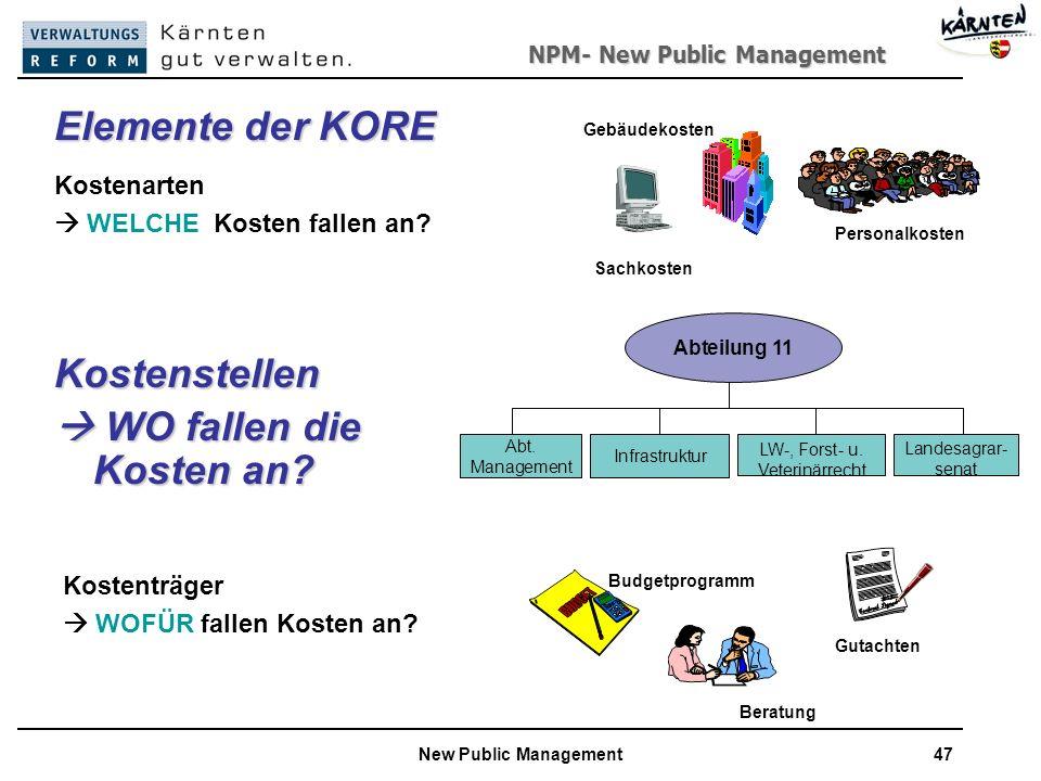 NPM- New Public Management New Public Management47 Kostenstellen WO fallen die Kosten an.