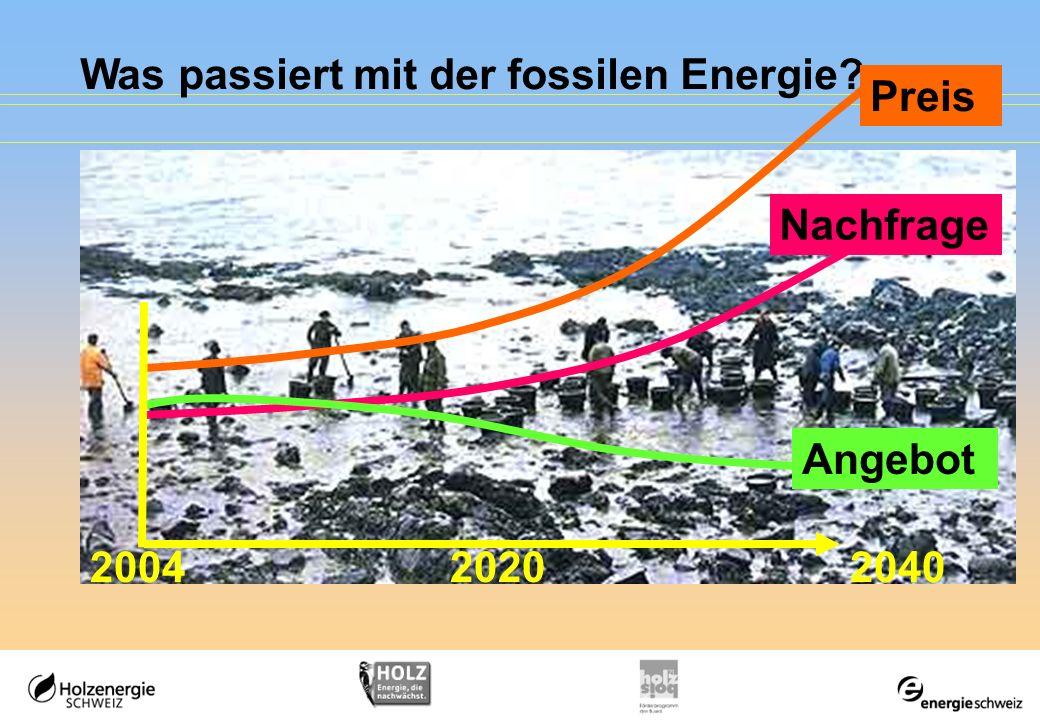 Was passiert mit der fossilen Energie? Angebot 204020042020 Preis Nachfrage