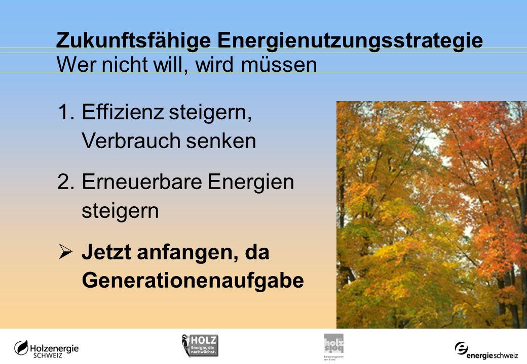 Zukunftsfähige Energienutzungsstrategie Wer nicht will, wird müssen 1.Effizienz steigern, Verbrauch senken 2.Erneuerbare Energien steigern Jetzt anfan