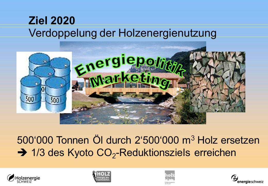 Ziel 2020 Verdoppelung der Holzenergienutzung 500000 Tonnen Öl durch 2500000 m 3 Holz ersetzen 1/3 des Kyoto CO 2 -Reduktionsziels erreichen