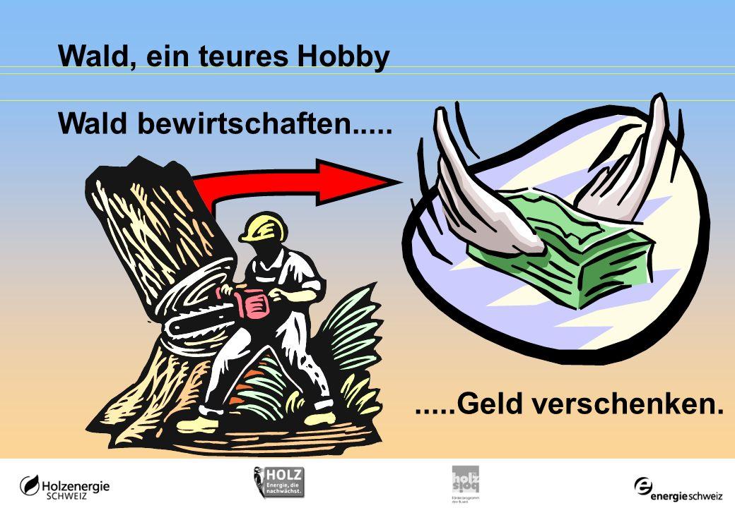 Wald, ein teures Hobby Wald bewirtschaften..........Geld verschenken.