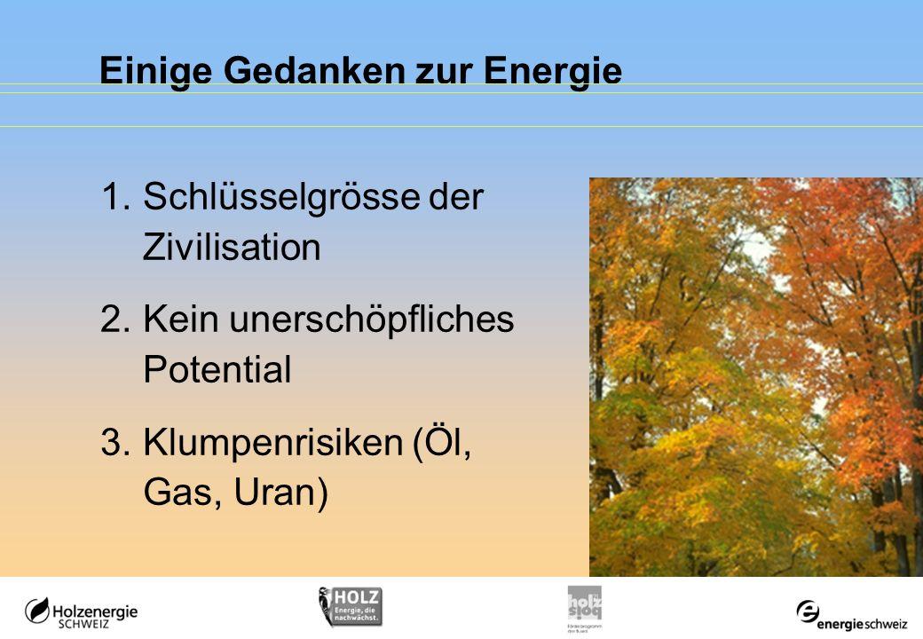 Einige Gedanken zur Energie 1.Schlüsselgrösse der Zivilisation 2.Kein unerschöpfliches Potential 3.Klumpenrisiken (Öl, Gas, Uran)