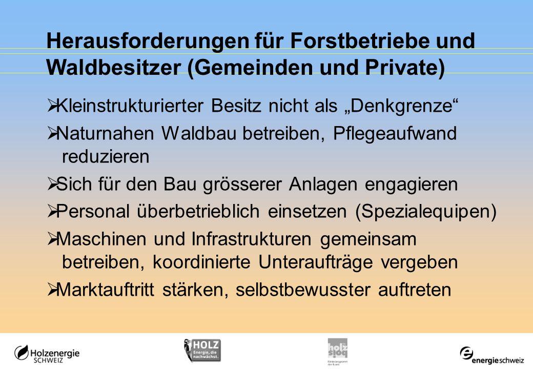 Herausforderungen für Forstbetriebe und Waldbesitzer (Gemeinden und Private) Kleinstrukturierter Besitz nicht als Denkgrenze Naturnahen Waldbau betrei