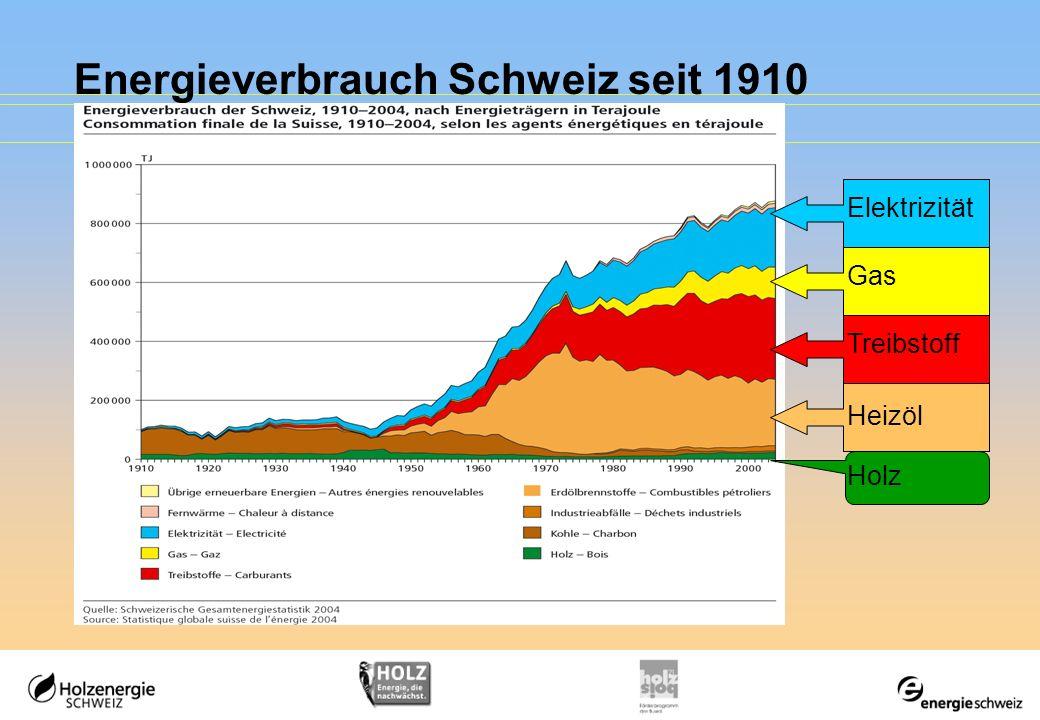 Energieverbrauch Schweiz seit 1910 Treibstoff Gas Elektrizität Heizöl Holz