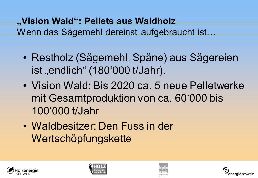 Vision Wald: Pellets aus Waldholz Wenn das Sägemehl dereinst aufgebraucht ist… Restholz (Sägemehl, Späne) aus Sägereien ist endlich (180000 t/Jahr). V