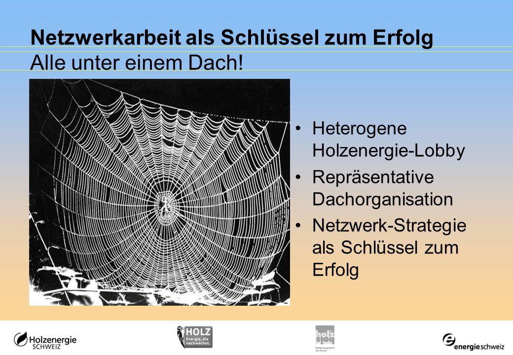Netzwerkarbeit als Schlüssel zum Erfolg Alle unter einem Dach! Heterogene Holzenergie-Lobby Repräsentative Dachorganisation Netzwerk-Strategie als Sch