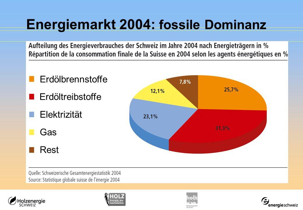 Energiemarkt 2004: fossile Dominanz Erdölbrennstoffe Erdöltreibstoffe Elektrizität Gas Rest