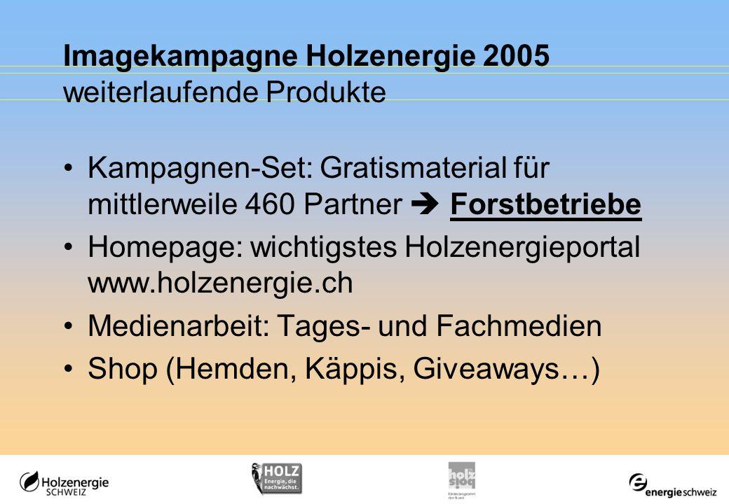 Imagekampagne Holzenergie 2005 weiterlaufende Produkte Kampagnen-Set: Gratismaterial für mittlerweile 460 Partner Forstbetriebe Homepage: wichtigstes