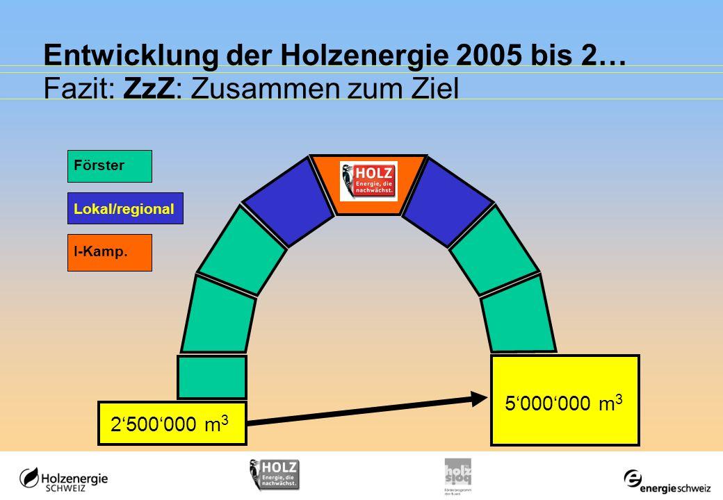 Entwicklung der Holzenergie 2005 bis 2… Fazit: ZzZ: Zusammen zum Ziel 2500000 m 3 5000000 m 3 I-Kamp. Förster Lokal/regional