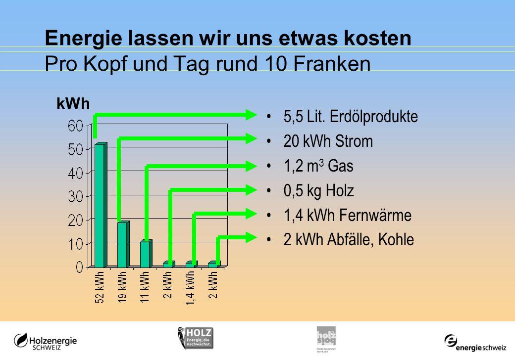 Energie lassen wir uns etwas kosten Pro Kopf und Tag rund 10 Franken 5,5 Lit. Erdölprodukte 20 kWh Strom 1,2 m 3 Gas 0,5 kg Holz 1,4 kWh Fernwärme 2 k