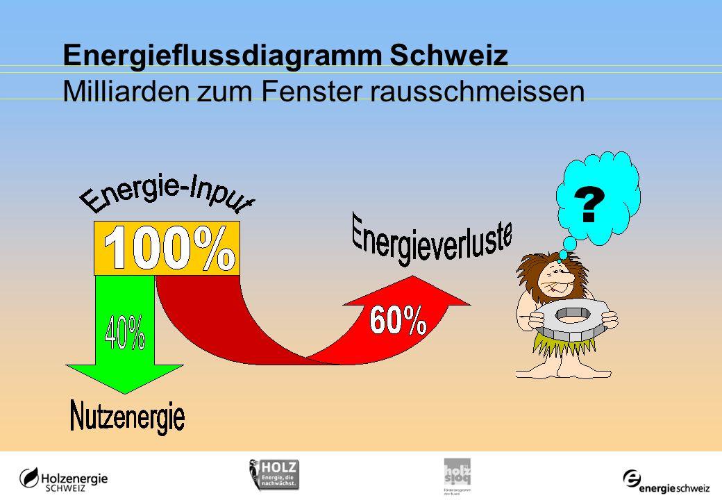 Energieflussdiagramm Schweiz Milliarden zum Fenster rausschmeissen