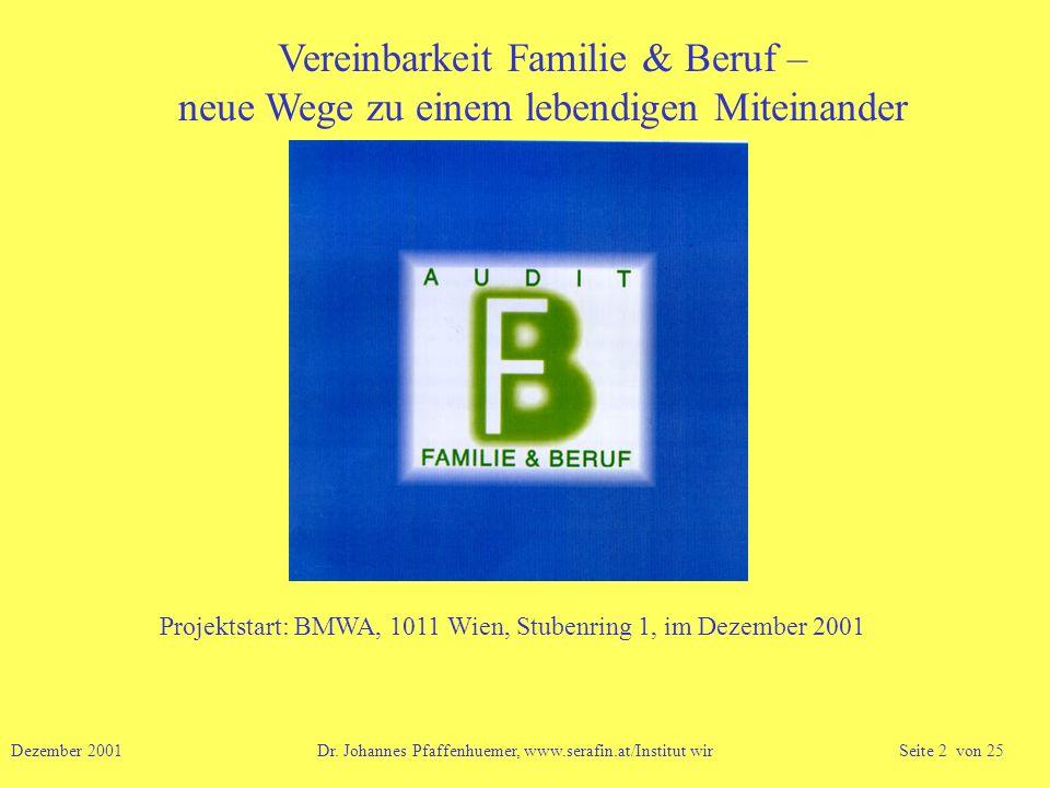 Projektstart: BMWA, 1011 Wien, Stubenring 1, im Dezember 2001 Dezember 2001 Dr. Johannes Pfaffenhuemer, www.serafin.at/Institut wir Seite 2 von 25 Ver