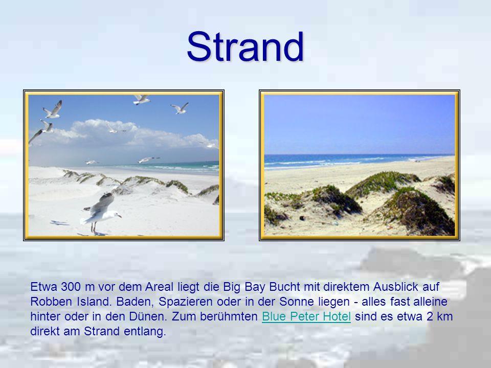 Strand Etwa 300 m vor dem Areal liegt die Big Bay Bucht mit direktem Ausblick auf Robben Island.