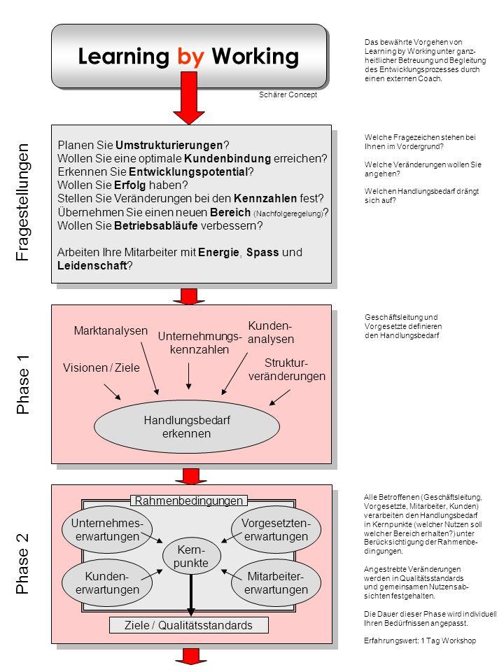 Learning by Working Phase 1 Handlungsbedarf erkennen Marktanalysen Kunden- analysen Visionen / Ziele Unternehmungs- kennzahlen Struktur- veränderungen