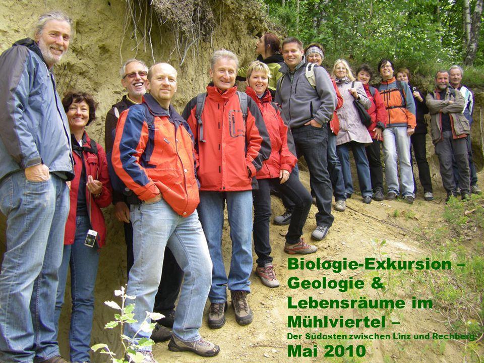 Biologie-Exkursion – Geologie & Lebensräume im Mühlviertel – Der Südosten zwischen Linz und Rechberg Mai 2010