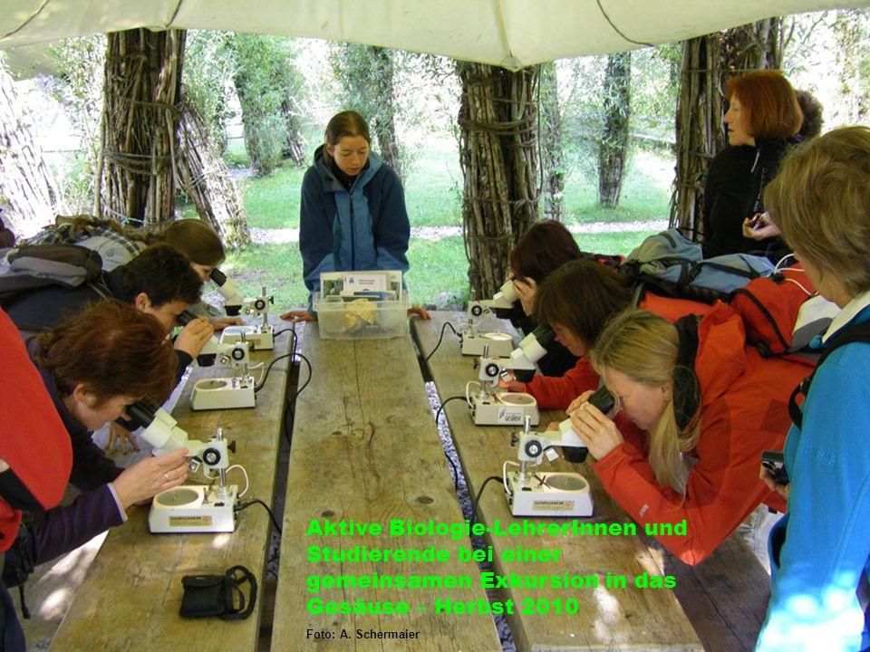 Aktive Biologie-LehrerInnen und Studierende bei einer gemeinsamen Exkursion in das Gesäuse – Herbst 2010 Foto: A. Schermaier