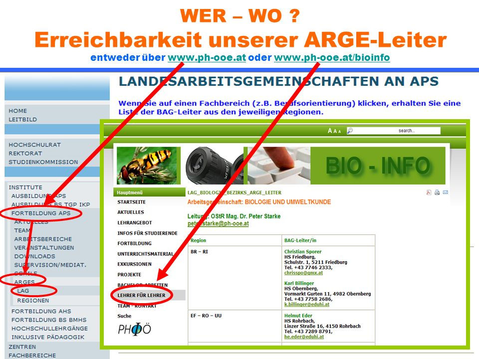 WER – WO ? Erreichbarkeit unserer ARGE-Leiter entweder über www.ph-ooe.at oder www.ph-ooe.at/bioinfowww.ph-ooe.atwww.ph-ooe.at/bioinfo