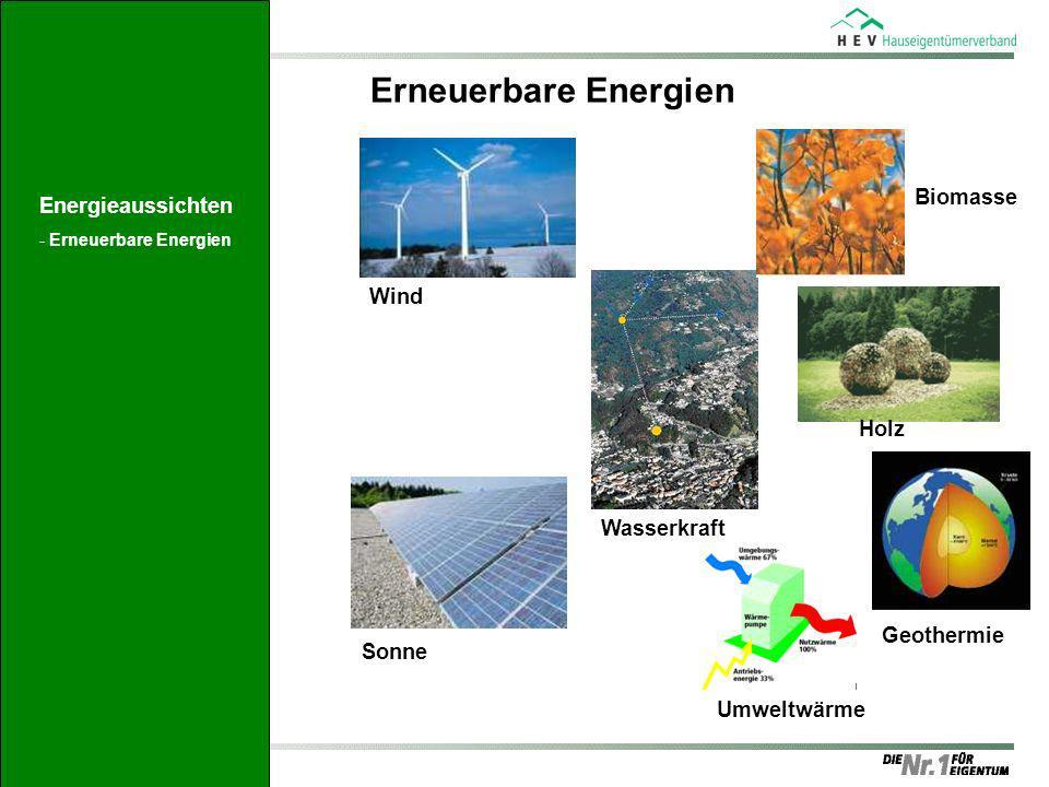Wind Sonne Wasserkraft Biomasse Holz Geothermie Umweltwärme Erneuerbare Energien Energieaussichten -Erneuerbare Energien