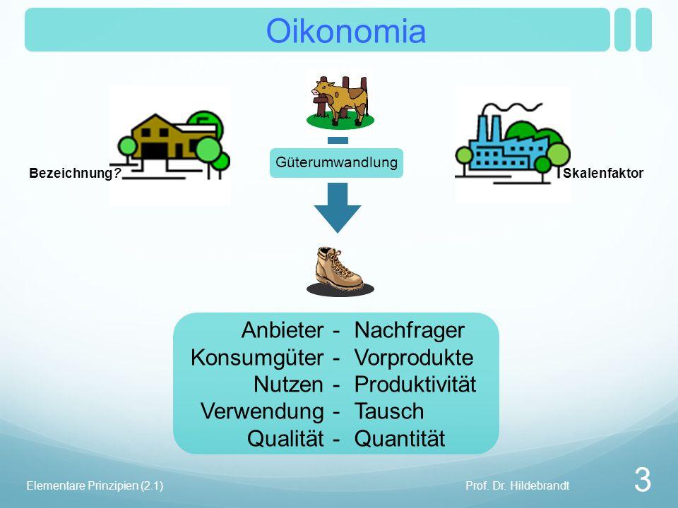 Oikonomia Skalenfaktor Prof.Dr. Hildebrandt 4 Elementare Prinzipien (2.1) Bezeichnung.