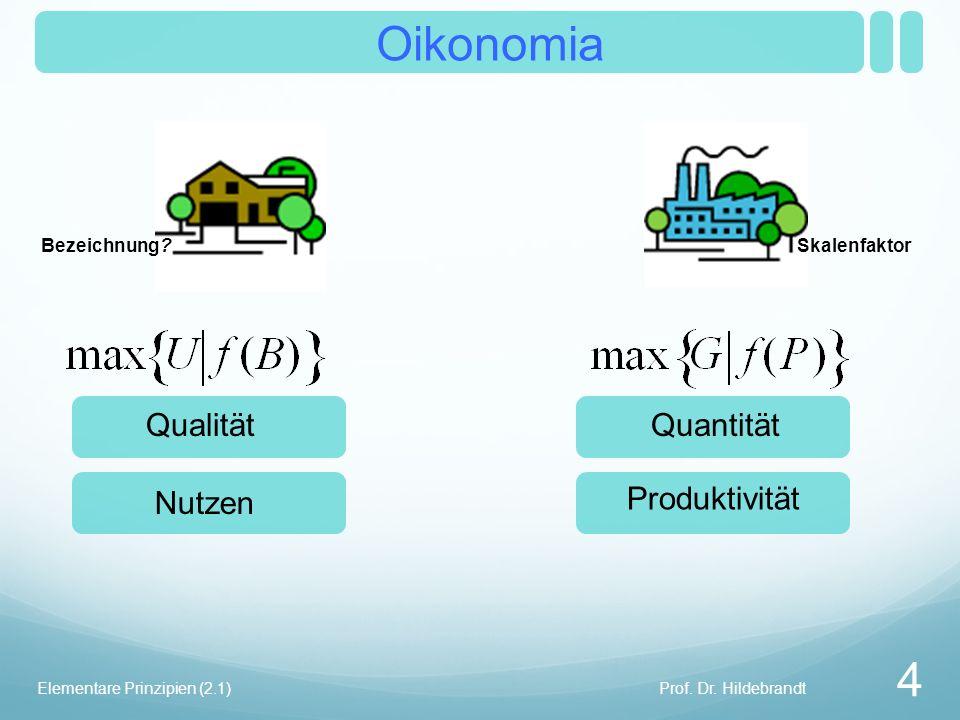 Oikonomia Skalenfaktor Prof. Dr. Hildebrandt 4 Elementare Prinzipien (2.1) Bezeichnung.