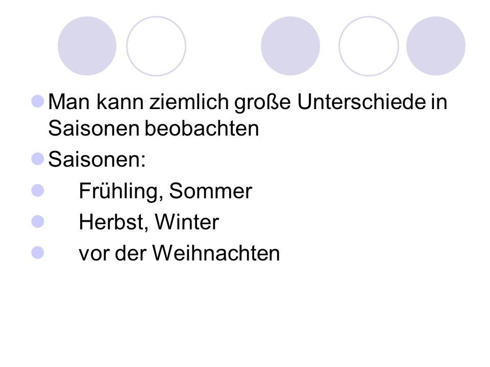Man kann ziemlich große Unterschiede in Saisonen beobachten Saisonen: Frühling, Sommer Herbst, Winter vor der Weihnachten